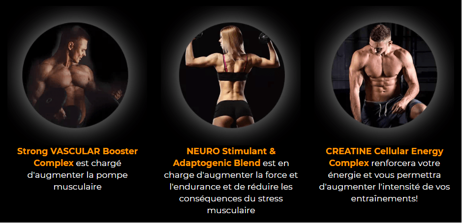 Nutrigo Lab Strength muscle sain et endurant